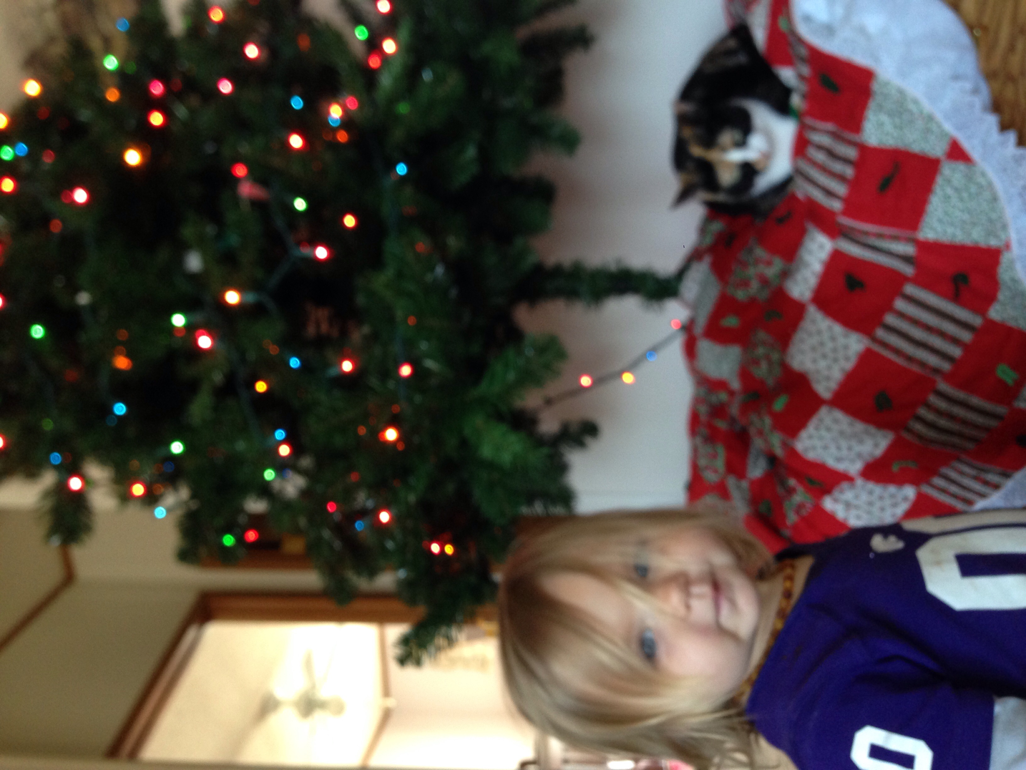 Toddler Proof Christmas Tree.Toddlerizing Your Christmas Tree Farm Fit Living