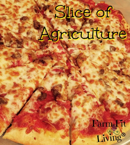 Slice of Agriculture