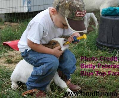 Sweet Beginnings: Skills Kids Learn By Raising Animals