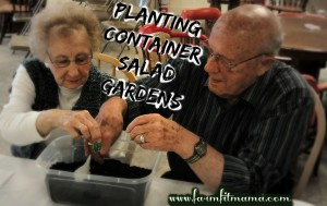 Planting Container Salad Gardens
