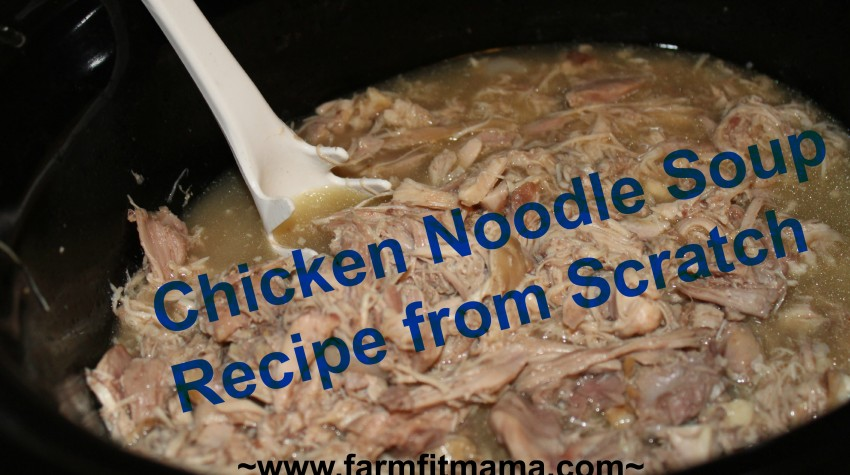 chicken noodle recipe from scratch