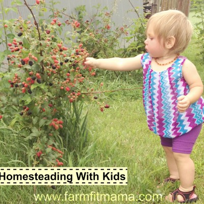 homesteading2