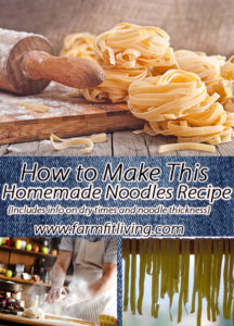How to Make this Homemade Egg Noodle Recipe