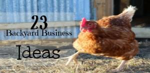 23 Backyard Business Ideas