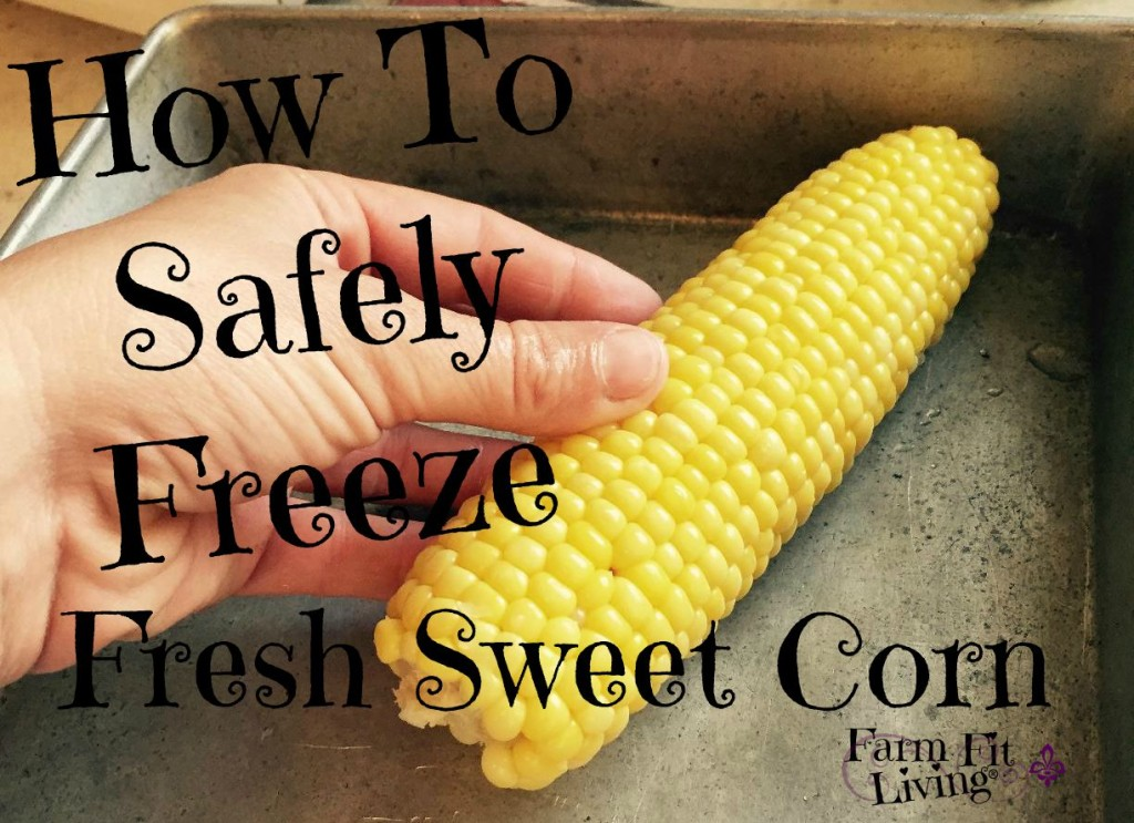 How to Safely Freeze Fresh Sweet Corn