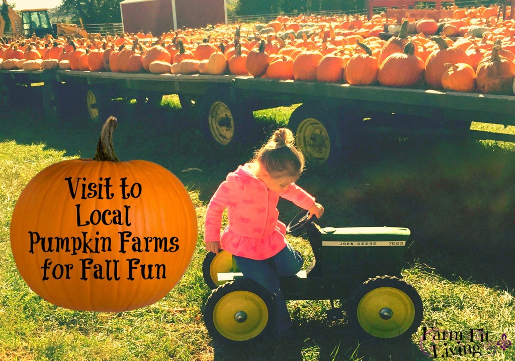 Visits to Local Pumpkin Farms