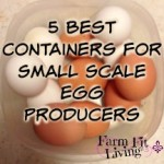 5 Best Containers for small scale egg producers