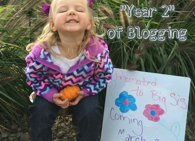 A Look Into Year Two of Blogging