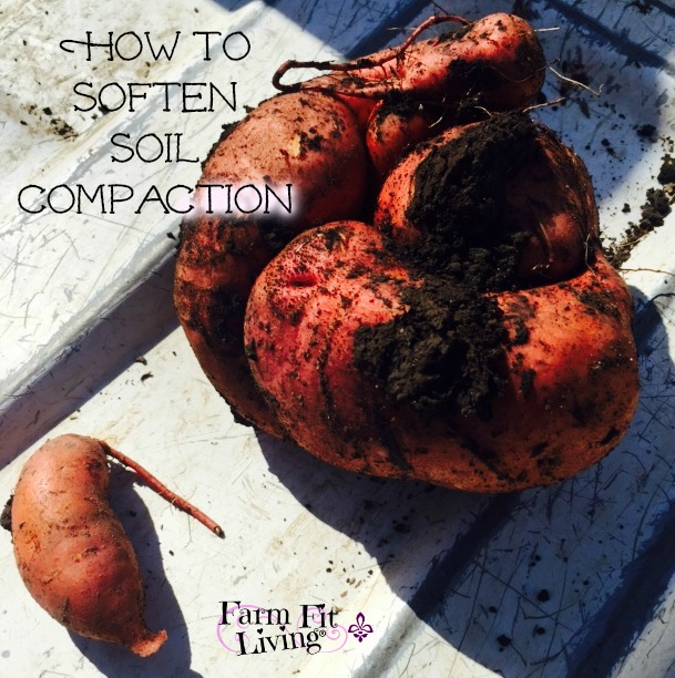 How to Soften Soil Compaction