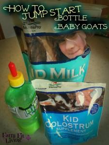 Jump Start Bottle Baby Goat Kids