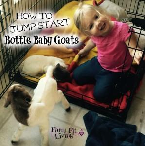 Jump Start Bottle Baby Goats