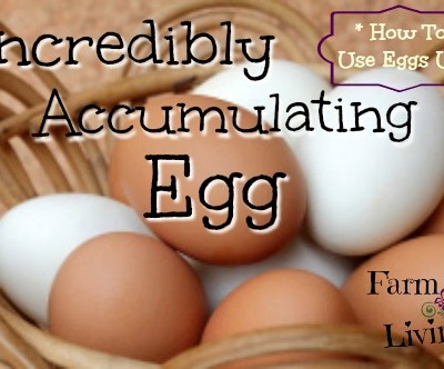 Incredibly Accumulating Egg + 5 Ways to Use Eggs Up