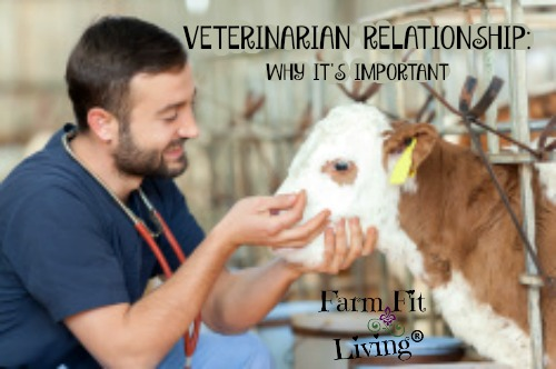 veterinarian relationship