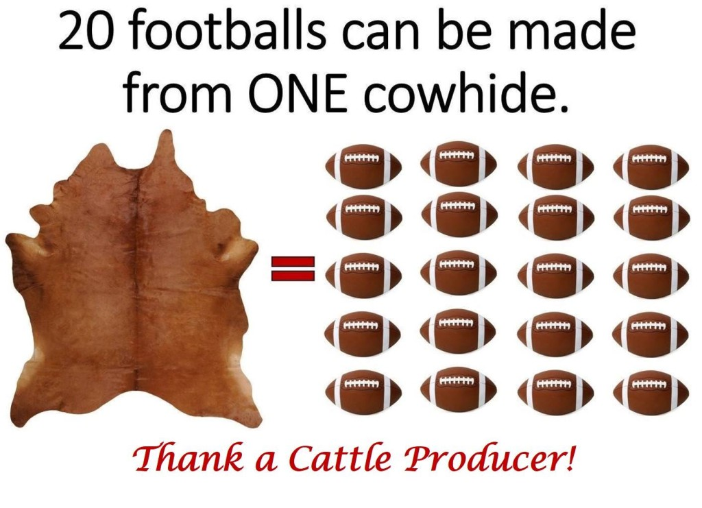Agriculture & Football
