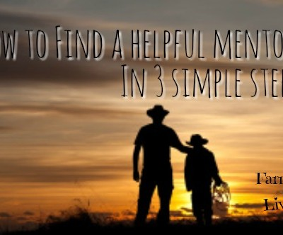 Find a Helpful Mentor in Just 3 Easy Steps