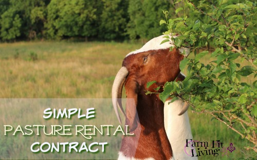 Simple Pasture Rental Contract Farm Fit Living