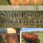 simple pasture rental contract
