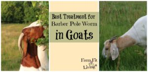 best treatment for barber pole worms in goats
