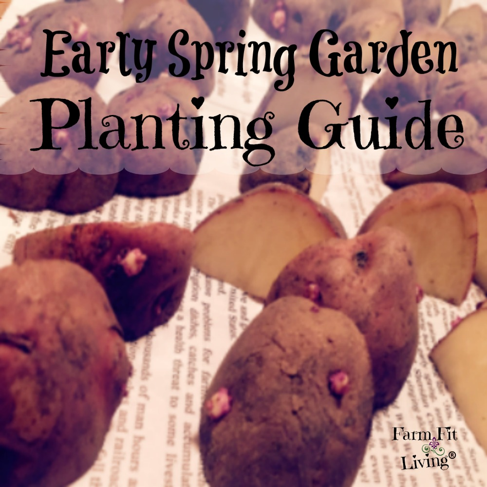 early spring garden planting guide
