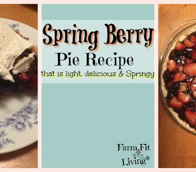 Spring Berry Pie Recipe for Any Time Of Year