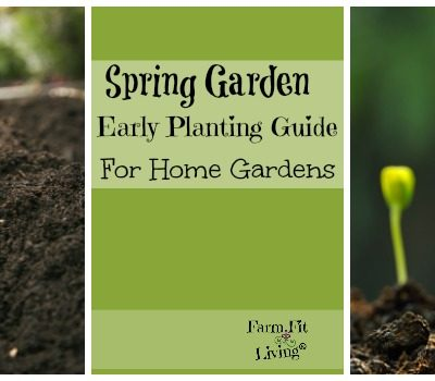 Spring Garden Early Planting Guide for Home Gardens