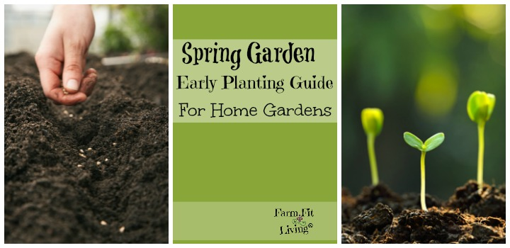 Spring Garden Early Planting Guide for Home Gardens | Farm Fit Living