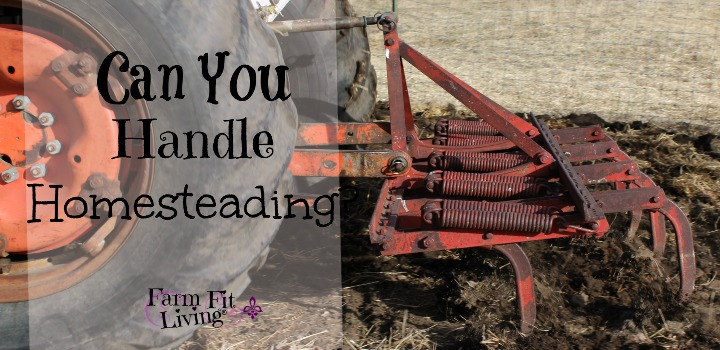 handle homesteading