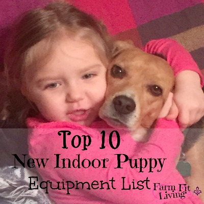 New Indoor Puppy