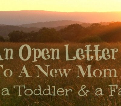 An Open Letter: To The New Mom With A Toddler & Farm