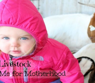 7 Ways Showing Livestock Prepared Me for Motherhood