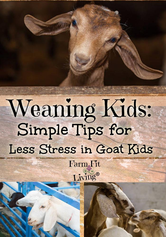 weaning kids