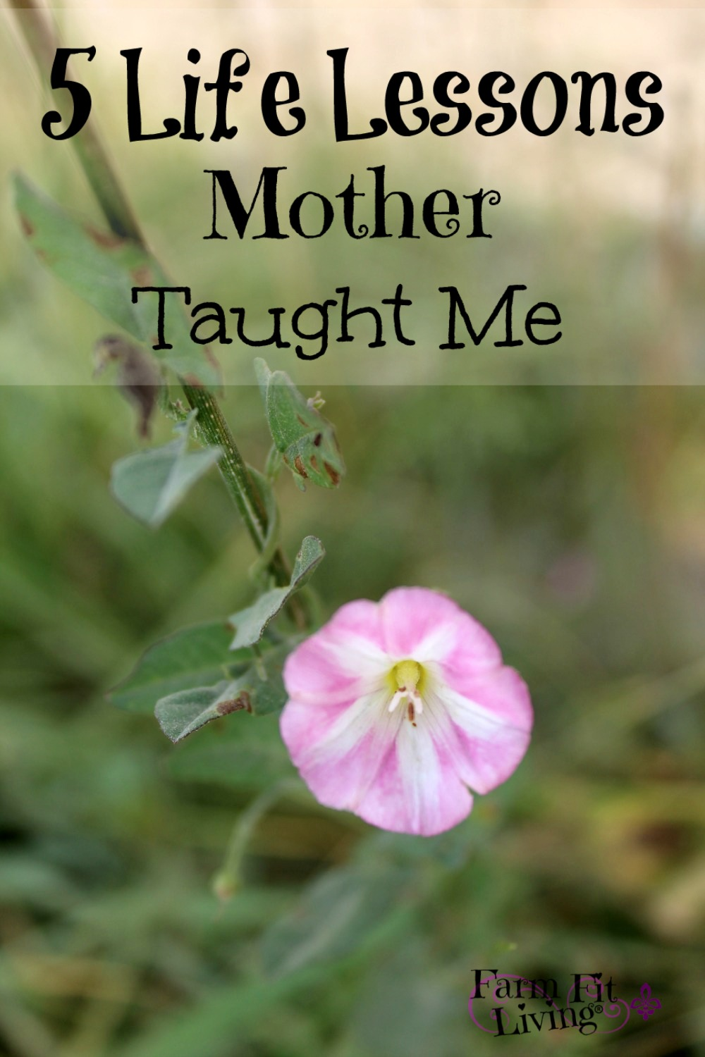 the important lessons of self importance and self reliance taught by my mother These activities are to be used with the come follow me november: self-reliance ask each young woman to briefly teach the the original lesson.
