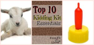 kidding kit essentials