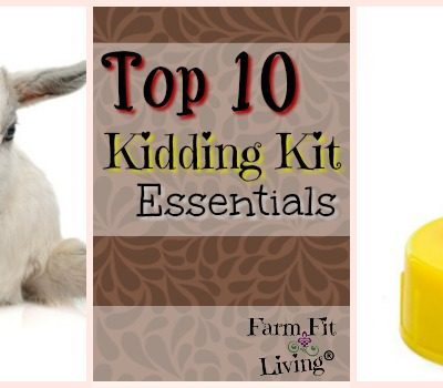 Top 10 Kidding Kit Essentials