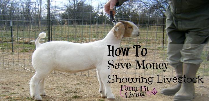 Save Money Showing Livestock