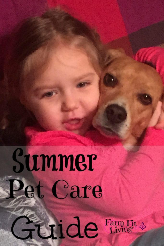 summer pet care guide