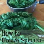 freeze spinach for later use