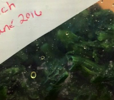 How to Freeze Spinach for Later Use