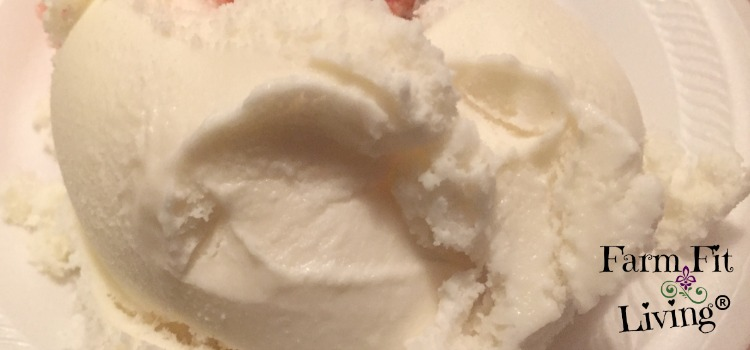 Homemade No-Cook Ice Cream