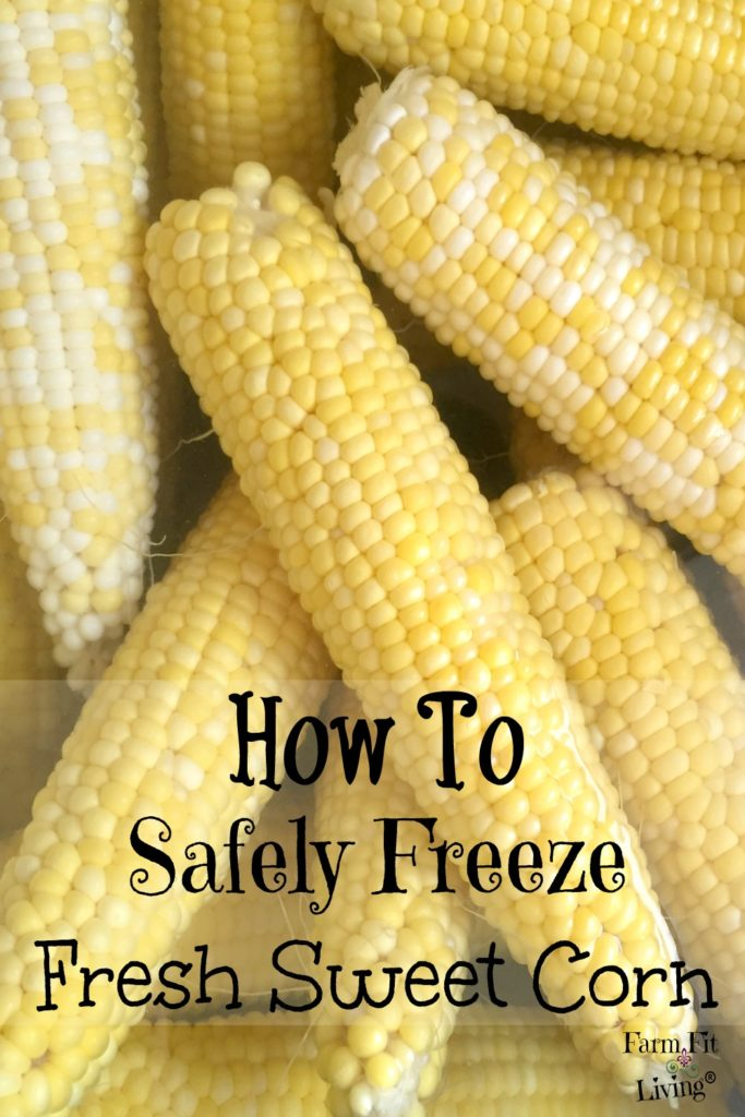 safely freeze freeze fresh sweet corn