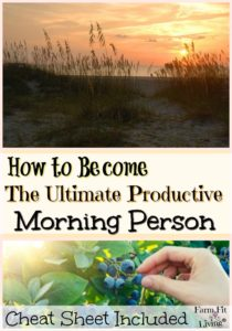 Ultimate Productive Morning Person