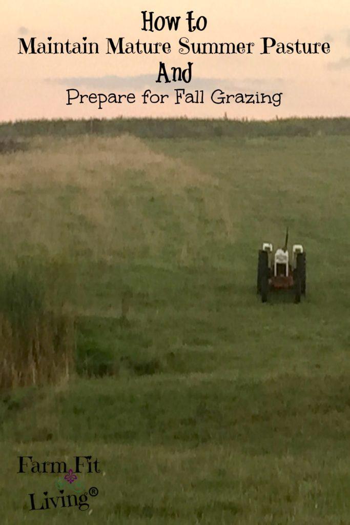 Maintain Mature Summer Pasture