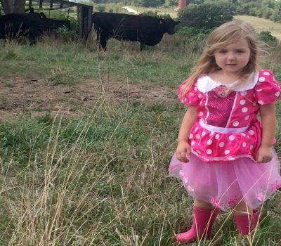 How to Maintain Mature Summer Pasture to Prepare for Fall Grazing