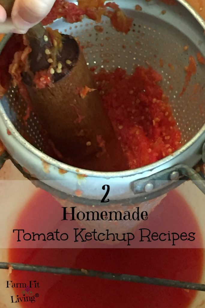 2 Homemade Tomato Ketchup Recipes