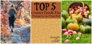 country family fun things to do