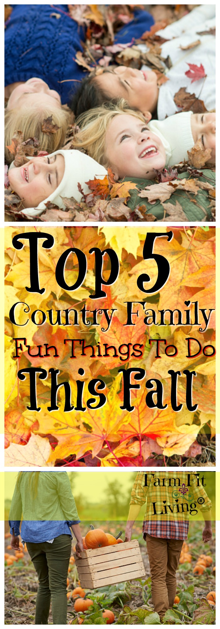 Looking for some Family Fun to do in the country this Fall? Here are my Top 5 favorite Fall activities to do with my family.