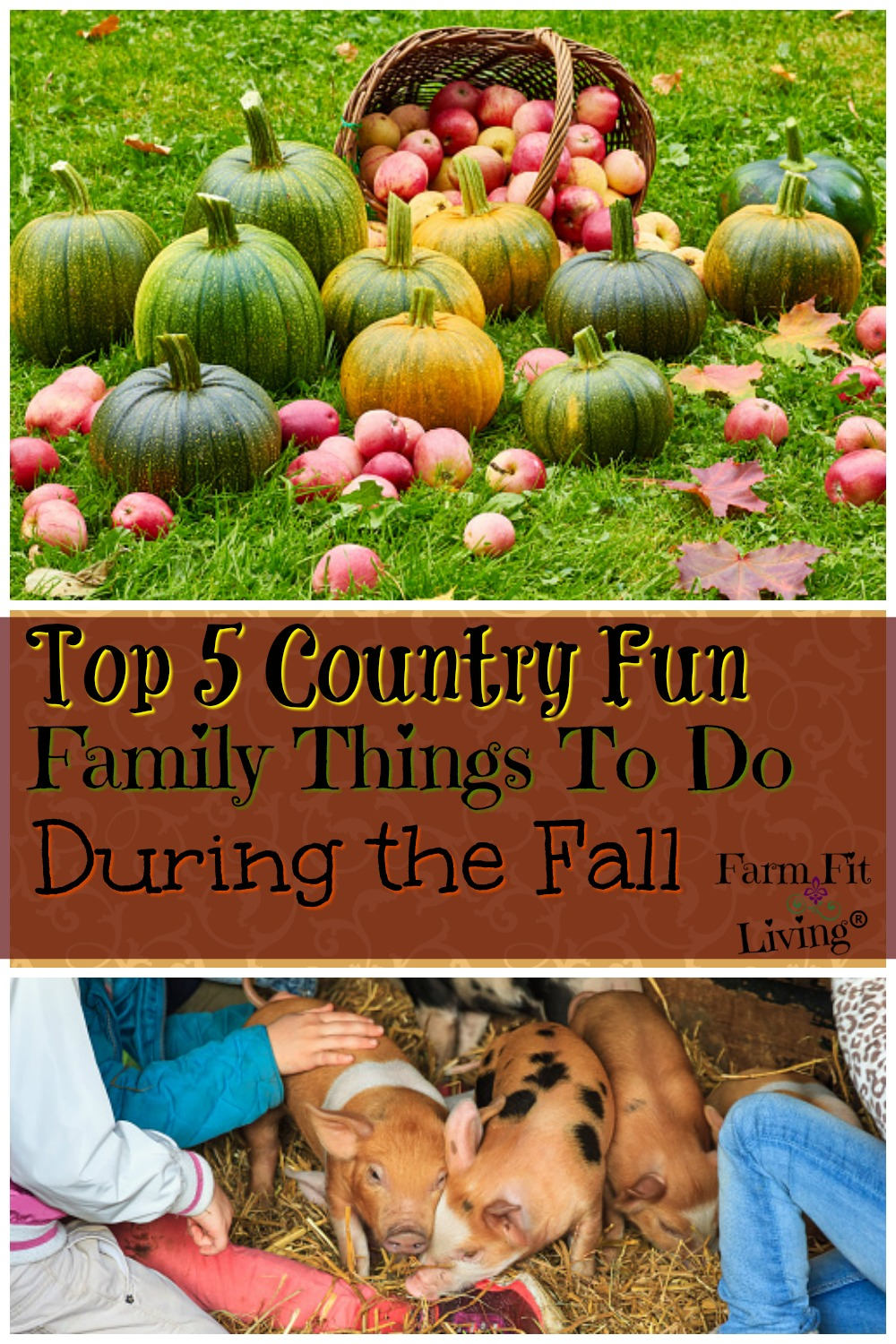 country farm family things to do this fall