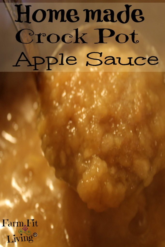 Homemade Crock Pot Apple Sauce