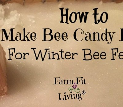 How to Make Bee Candy Boards For Winter Bee Feeding