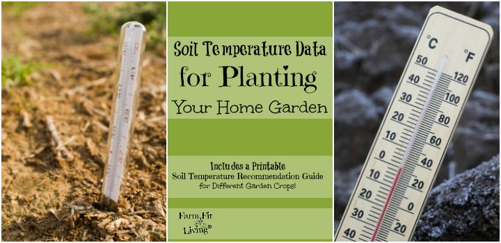 soil temperature data